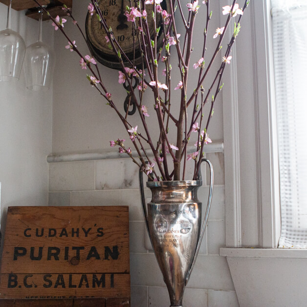 Vintage trophy with forced pink branches